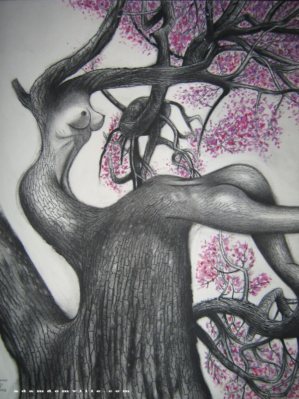 Charcoal and pastel, spring 2002